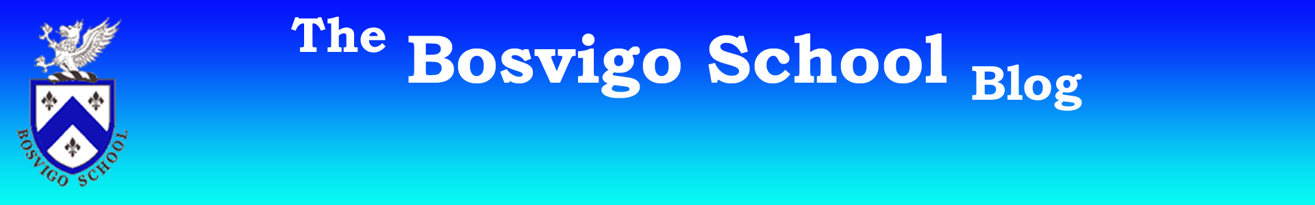 The Bosvigo School Blog